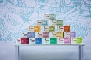 Les thés 1336 de la coopérative Scop-Ti